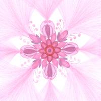 Vnitřní žena: mandala pro posílení naší vnitřní ženské stránky; něhy, citlivosti, pasivity...